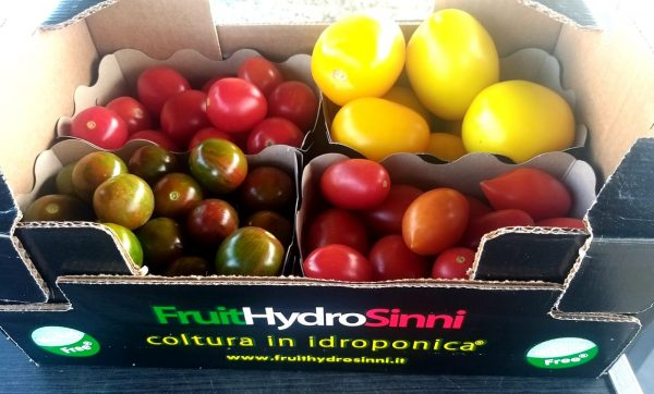 acquisto pomodori senza nichel